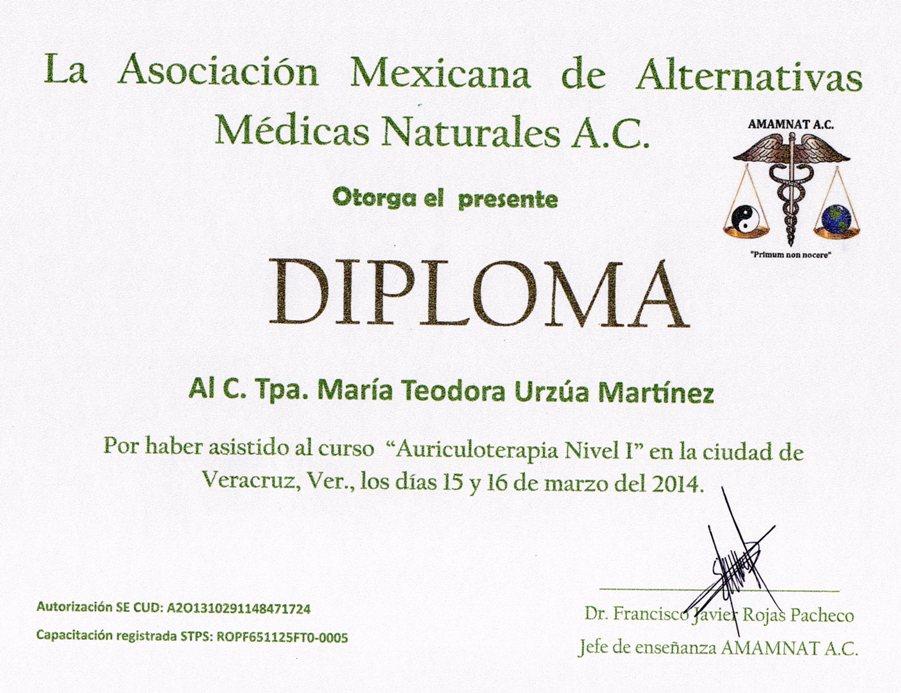 ejemplo de diploma